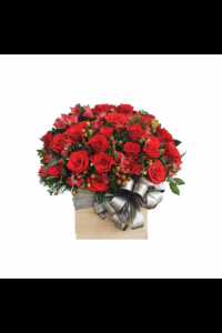 Hoa Hộp 245