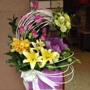 Hoa Hộp 35